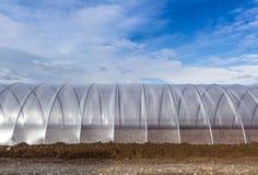 Växthusyttersida på blå himmel Fotografering för Bildbyråer