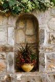 växtkruka Arkivfoto