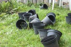 Växtkrukor fotografering för bildbyråer