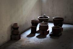 Växtkrukor på tegelstenar i mörka skuggor i en nedfläckad komplex korridor royaltyfria bilder