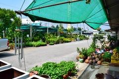 Växtmarknad i Thailand Royaltyfri Bild
