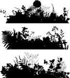 växtsilhouette Arkivbild