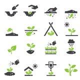 Växtsymbol Arkivbild