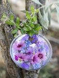 Växttinktur och blomma Arkivbilder