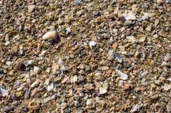 Våg av havet på sandstranden Arkivbilder
