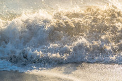 Våg av Stilla havet Fotografering för Bildbyråer