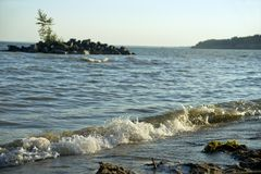 Våg på floden Arkivbilder