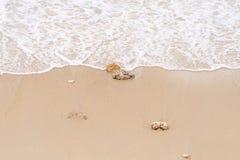 Våg på till stranden Fotografering för Bildbyråer