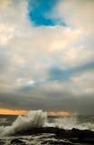 Våg som försöker att nå himlen Royaltyfri Fotografi