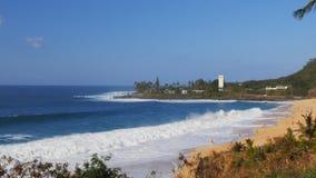 Vågavbrott på stranden på den Waimea fjärden i Hawaii lager videofilmer