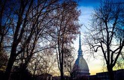 Vågbrytare Antonelliana - Torino Fotografering för Bildbyråer