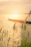 Vågbrytaren i havet Arkivfoto