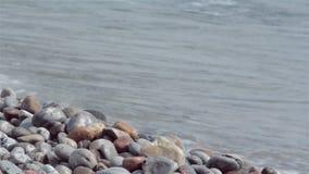 Vågkrasch längs en stenig kust stock video