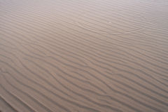 Vågmodeller på sand i grunt vatten på stranden i vinter Royaltyfria Bilder