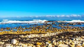 Vågor av Atlanticet Ocean som bryter på de steniga kusterna av udde av bra hopp Fotografering för Bildbyråer