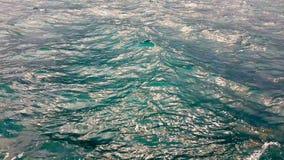 Vågor av ett hav lager videofilmer