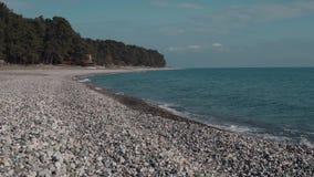 Vågor av havet tvättar kiselstenkusten i dag, skog i bakgrund lager videofilmer