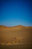 Vågor av Persien Royaltyfria Bilder