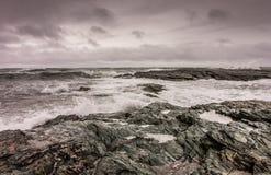 Vågor bryter mot den steniga kustlinjen i Newport, Rhode - ön Royaltyfri Bild