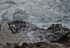 Vågor dunkar vaggar på den Hanauma fjärden på Oahu arkivbilder