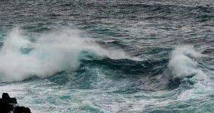 Vågor i Atlantic Ocean, Porto Moniz, madeiraö Portugal, ultrarapid arkivfilmer