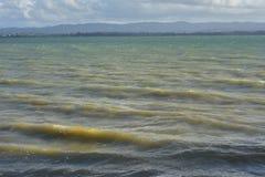 Vågor i skum hamn Arkivfoto