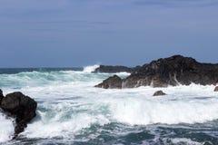 Vågor kraschar på vulkaniskt vaggar arkivfoton