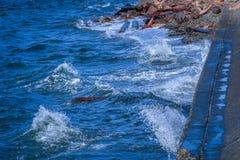 Vågor mot en vågbrytare arkivfoton