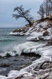 Vågor och färgstänk på Lake Baikal med vaggar, och träd i Uzuri skäller Royaltyfri Foto