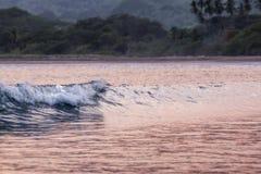 Vågor och solnedgång, playatambor Costa Rica Royaltyfria Bilder