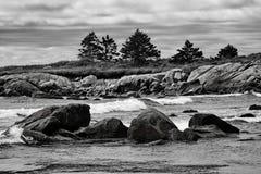 Vågor och vaggar längs kustlinjen i Nova Scotia Canada Royaltyfria Foton