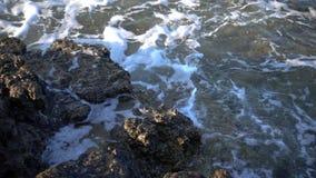 Vågor och vaggar nära sjösidan lager videofilmer