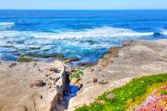 Vågor på den La Jolla stranden i San Diego California royaltyfria bilder