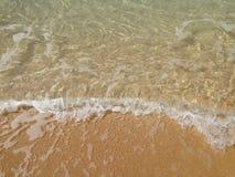 Vågor på den Waimea fjärden royaltyfri bild