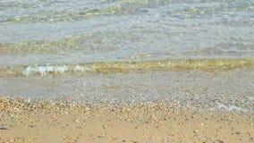 Vågor på en strand stock video