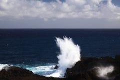 Vågor på havskusten Royaltyfri Foto