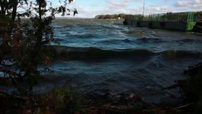 Vågor på sjön lager videofilmer