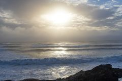 Vågor sköljas upp på stranden på styrmanfjärden i Tofino, F. KR. royaltyfri bild