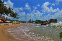 Vågor som kolliderar på en sandig guld- strand på tambabaen Royaltyfria Bilder