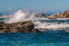 Vågor som kraschar på den Kaikoura kusten Arkivfoton