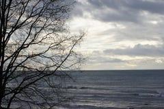 Vågor som rullar på en molnig dag Royaltyfria Foton