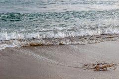 Vågor som rullar in på stranden Arkivbild