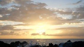 Vågor stiger i luften på härligt solnedgångljus Den stora vågen kraschar på vaggar och att bespruta Nära övre sikt av en sprej in stock video
