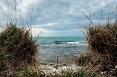 Vågorna av havet Arkivbilder