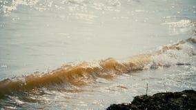 Vågorna som svaller på den sandiga kusten