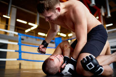 Våldsam brottningkamp i boxningsring Arkivfoto