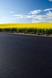 våldtar det blåa fältet för asfalt skyen Royaltyfri Fotografi