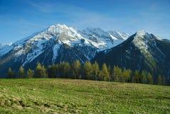 Våräng i berg Arkivfoton