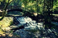 Vår av den Bosna floden Arkivbild