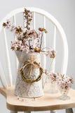 Vår Cherry Blossom On Chair Arkivfoto